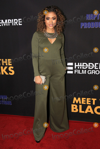 Paige Hurd Photo - 29 March 2016 - Hollywood California - Paige Hurd Meet The Blacks Los Angeles Premiere held at ArcLight Hollywood Photo Credit Winston BurrisAdMedia