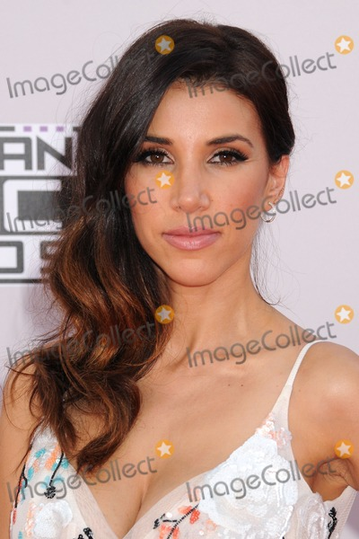 Adrianna Costa Photo - 23 November 2014 - Los Angeles California - Adrianna Costa American Music Awards 2014 - Arrivals held at Nokia Theatre LA Live Photo Credit Byron PurvisAdMedia