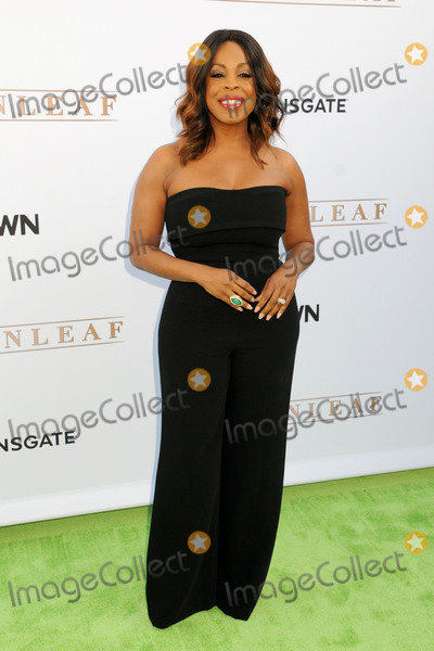 Niecy Nash Photo - 15 June 2016 - Hollywood California - Niecy Nash OWN Networks Greenleaf Los Angeles Premiere held at The Lot Photo Credit Byron PurvisAdMedia