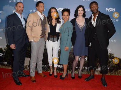 Amirah Vann Photo - 08 January  - Pasadena Ca - Chris Meloni Alano Miller Jurnee Smollett-Bell Amirah Vann Jessica de Gouw Aldis Hodge Arrivals for the WGN America Winter TCA Tour Underground held at The Langham Hotel Photo Credit Birdie ThompsonAdMedia