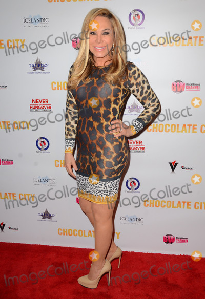 Adrienne Maloof Photo - 21 May 2015 - Los Angeles California - Adrienne Maloof Screening of the feature film Chocolate City held at Crest Theater Photo Credit Birdie ThompsonAdMedia