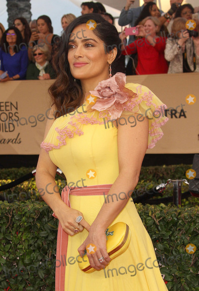 Salma Hayek Photo - 29 January 2017 - Los Angeles California - Salma Hayek 23rd Annual Screen Actors Guild Awards held at The Shrine Expo Hall Photo Credit AdMedia