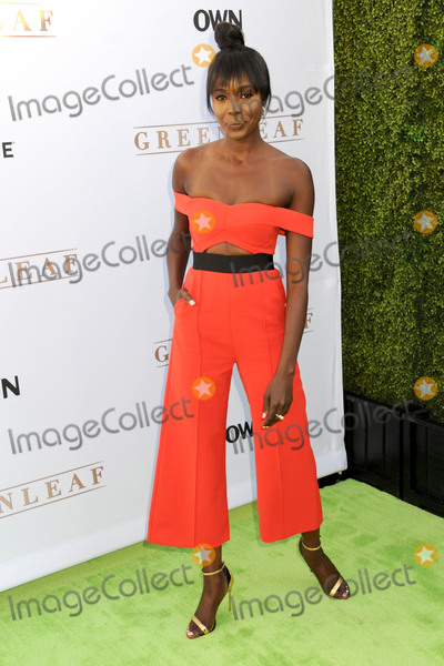 Anna Diop Photo - 15 June 2016 - Hollywood California - Anna Diop OWN Networks Greenleaf Los Angeles Premiere held at The Lot Photo Credit Byron PurvisAdMedia