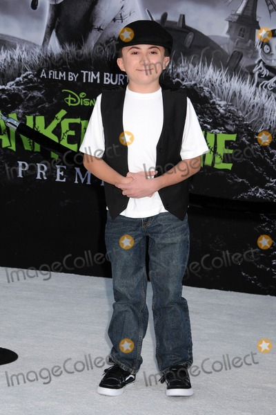 Atticus Shaffer Photo - 24 September 2012 - Hollywood California - Atticus Shaffer Frankenweenie Los Angeles Premiere held at the El Capitan Theatre Photo Credit Byron PurvisAdMedia