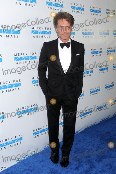 Richard Marx Photo - 29 August 2015 - Culver City California - Richard Marx Mercy For Animals Hidden Heroes Gala 2015 held at Unici Casa Photo Credit Byron PurvisAdMedia