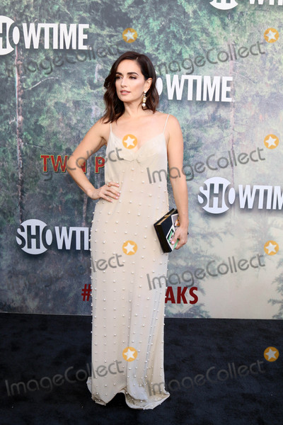 Ana De la reguera Photo - Ana de la Regueraat the Twin Peaks Premiere Screening The Theater at Ace Hotel Los Angeles CA 05-19-17