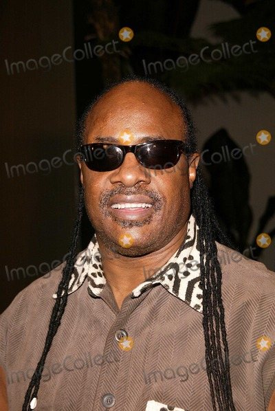 Tupac Photo - Stevie Wonder at the premiere of Paramount Pictures Tupac Resurrection at the ArcLight Theaters Hollywood CA 11-04-03