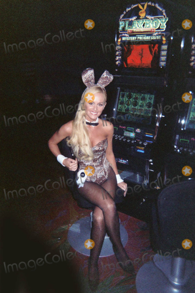 Playboy bunny palms casino greektown casino bans video poker players