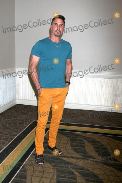 Don Diamont Photo - LOS ANGELES - AUG 16  Don Diamont at the Bold and Beautiful Fan Event Sunday at the Universal Sheraton Hotel on August 16 2015 in Universal City CA