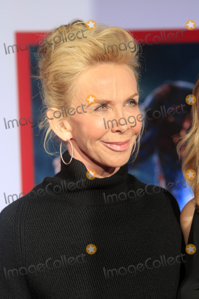 Trudy Styler Photo - LOS ANGELES - APR 24  Trudi Styler arrives at the Iron Man 3 LA premiere at the El Capitan Theater on April 24 2013 in Los Angeles CA