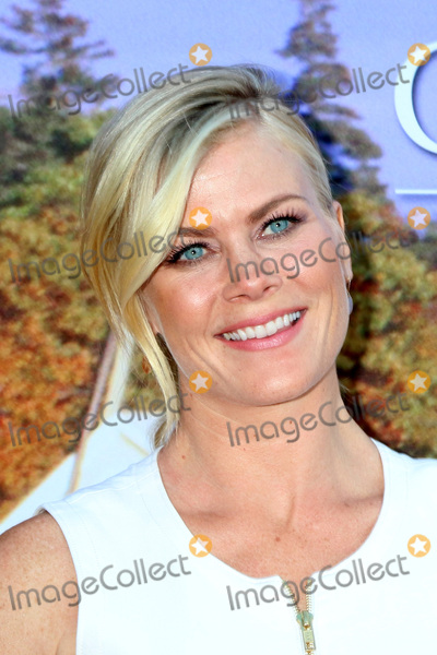 Alison Sweeney Photo - LOS ANGELES - JUL 27  Alison Sweeney at the Hallmark Summer 2016 TCA Press Tour Event at the Private Estate on July 27 2016 in Beverly Hills CA