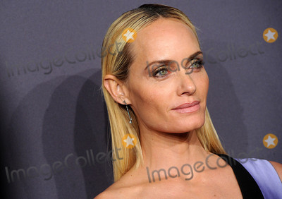 Amber Valletta Photo - Photo by Dennis Van TinestarmaxinccomSTAR MAX2017ALL RIGHTS RESERVEDTelephoneFax (212) 995-11962817Amber Valletta at The19th Annual amfAR New York Gala(NYC)
