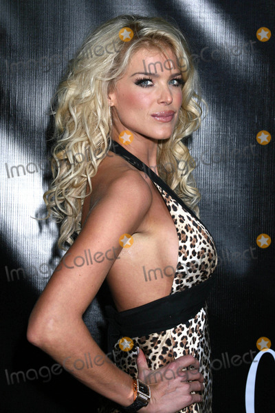 VICTORIA SILVERSTEDT Photo - Photo by Victor Malafrontestarmaxinccom20072307Victoria Silverstedt at the Market America Party in celebration of the upcoming Super Bowl(Miami Florida)
