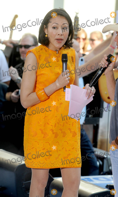 Ann Curry Photo - Photo by Dennis Van Tinestarmaxinccom2012starmaxinccomALL RIGHTS RESERVEDTelephoneFax (212) 995-119662212Ann Curry on The Today Show(NYC)