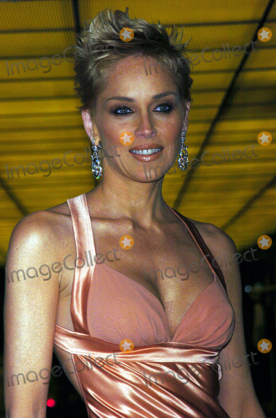 Sharon Stone Photo - Actress Sharon Stone arrived at the Waldorf Astoria Hotel in New York City for the American Museum of the Moving Image 19th Annual Benefit saluting Richard Gere April 20 2004
