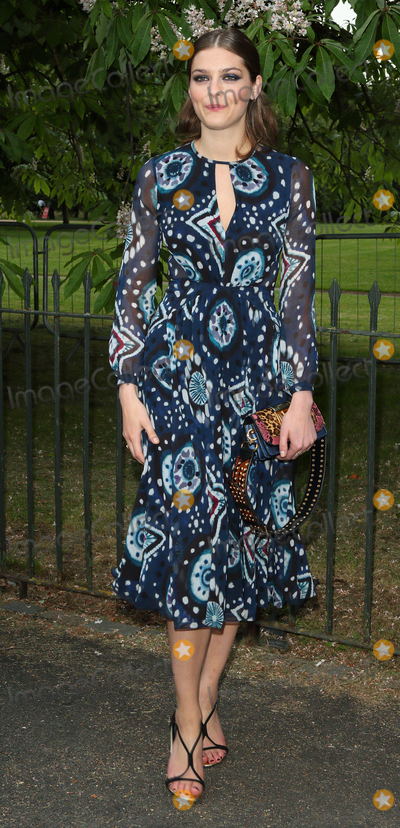 Amber Anderson Photo - London UK  Amber Anderson  at The Serpentine Gallery Summer Party at Kensington Gardens London 6th July 2016 Ref LMK73-60819-070716Keith MayhewLandmark Media WWWLMKMEDIACOM
