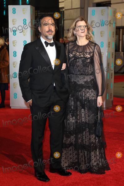Alejandro GInarritu Photo - LondonUK Alejandro G Inarritu and Maria Eladia    at the EE British Academy Film Awards (BAFTA) 2016  at the Royal Opera House Covent Garden London 14th February 14th 2016 RefLMK73-59988-150216 Keith MayhewLandmark Media WWWLMKMEDIACOM