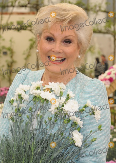 Angela Rippon Photo - London UK 210512Angela Rippon at the RHS Chelsea Flower Show held at the Royal Hospital in Chelsea21 May 2012Matt LewisLandmark Media