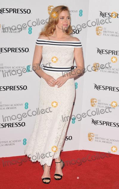 Amy Adams Photo - LondonUK Amy Adams   at the Nespresso pre-BAFTAs Nominees Party Kensington Palace Kensington Gardens London 11th February 2017RefLMK315-62780-120217Can NguyenLandmark MediaWWWLMKMEDIACOM