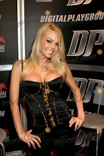 2008 adult industry convention las vegas