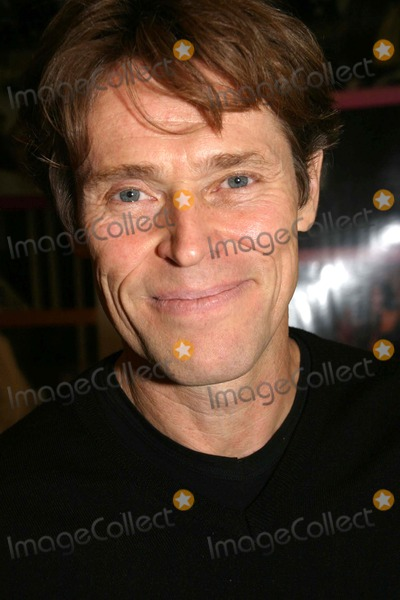 Willem Dafoe Photo - New York Film Festival Go Go Tales Press Conference Walter Reade Theatre New York City 09-24-2007 Photo by Barry Talesnick-ipol-Globe Photos 2007 Willem Dafoe