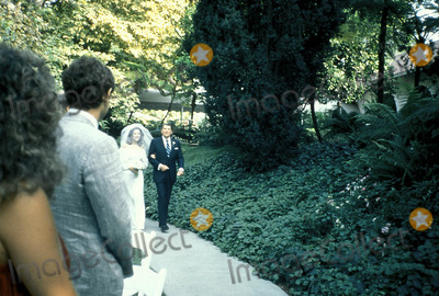 Patti Davis Photo - Patti Davis Wedding Ronald Reagan Photo Byphil RameyGlobe Photos Inc 1984