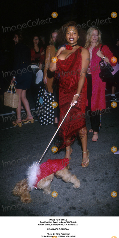 Lisa Nicole Carson Photo - Paws For Style Dog Fashion Event to Benefit Spcala Rodeo Drive Beverly Hills CA 10152000 Lisa Nicole Carson Photo by Nina Prommer Globe Photos Inc 2000