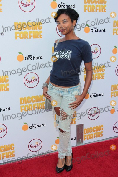 Aasha Davis Photo - Aasha Davis attends Los Angeles Premiere of the Orchards Digging For Fire on August 13th 2015 at the Arclight in Los AngelescaliforniaphototleopoldGlobephotos