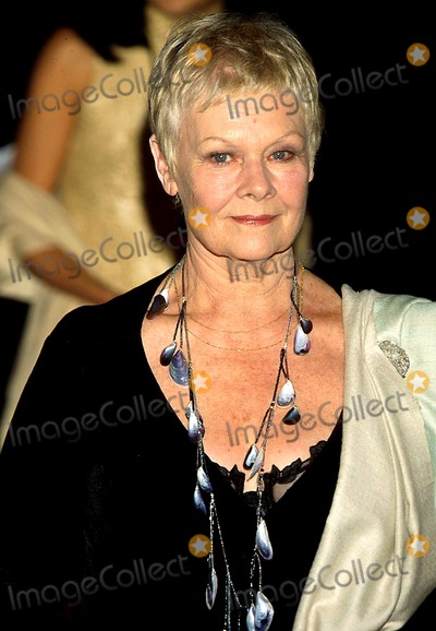 Judi Dench Photo - Sd0000 Photo Byroger HarveyGlobe Photos Inc Judy Dench