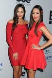 The Bella Twins Photo 2