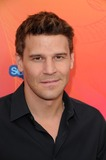 David Boreanaz Photo - FOX TCA All Star Party