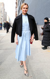 Photos From Diane Kruger is seen in New York City