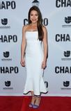 Juliette Pardau Photo - El Chapo premiere in Los Angeles CA