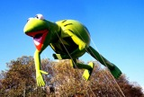 Kermit the Frog Photo 2