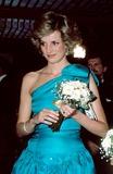 Princess Diana Photo 2