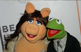 Kermit the Frog Photo 2