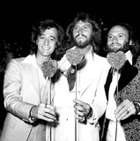 The Bee GEES Photo 2
