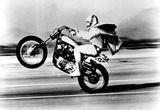 Evel Knievel Photo 2