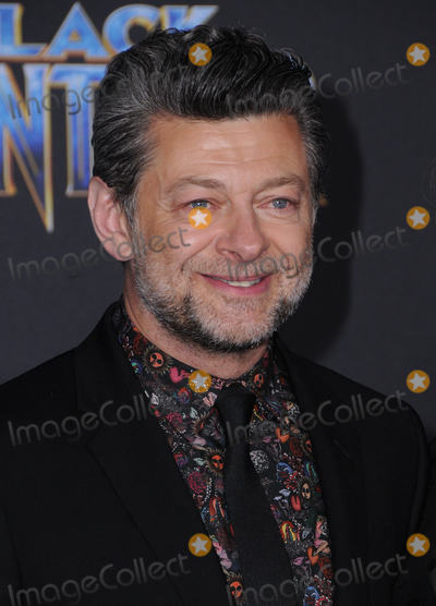 Andy Serkis Photo - 29 January 2018 - Hollywood California - Andy Serkis Marvel Studios Black Panther World Premiere held at Dolby Theater Photo Credit Birdie ThompsonAdMedia