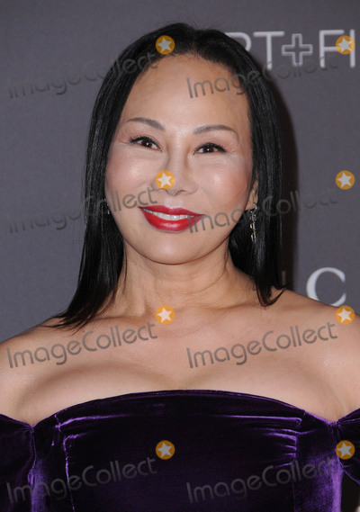 Ava Chow Photo - 04 November  2017 - Los Angeles California - Ava Chow 2017 LACMA ArtFilm Gala held at LACMA in Los Angeles Photo Credit Birdie ThompsonAdMedia