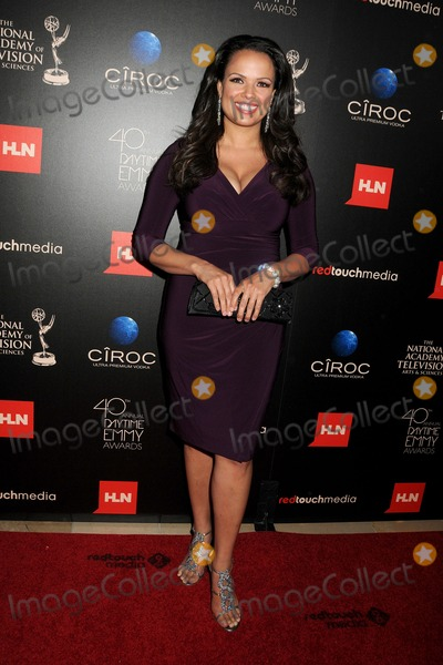 Natasha Curry Photo - 16 June 2013 - Beverly Hills California - Natasha Curry 40th Annual Daytime Emmy Awards - Arrivals held at the Beverly Hilton Hotel Photo Credit Byron PurvisAdMedia
