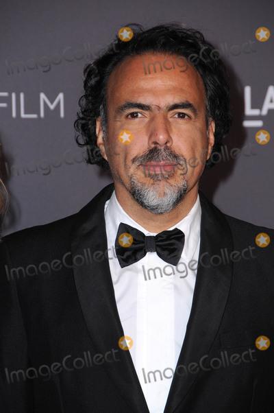 Alfonso Inarritu Photo - 04 November  2017 - Los Angeles California - Alfonso Inarritu 2017 LACMA ArtFilm Gala held at LACMA in Los Angeles Photo Credit Birdie ThompsonAdMedia