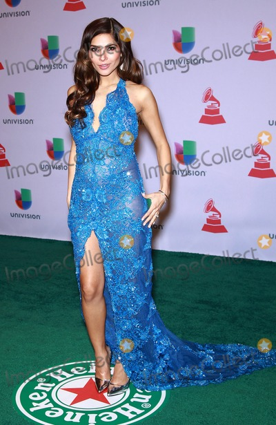Alejandra Espinoza Photo - 20 November 2014 - Las Vegas Nevada -  Alejandra Espinoza  15th Annual Latin Grammy Arrivals at MGM Grand Garden Arena  Photo Credit MJTAdMedia