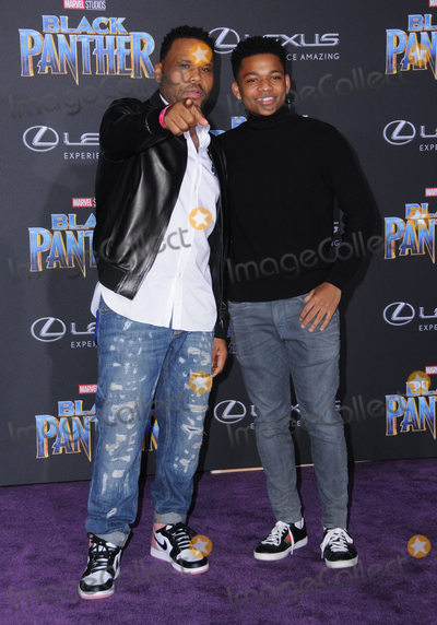 Anthony Anderson Photo - 29 January 2018 - Hollywood California - Anthony Anderson Marvel Studios Black Panther World Premiere held at Dolby Theater Photo Credit Birdie ThompsonAdMedia