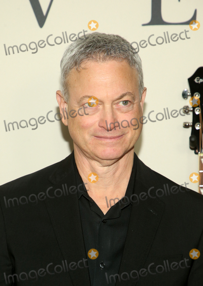 Gary Sinise Photo - 7  March 2020 - Hollywood California - Gary Sinise Premiere Of Lionsgates I Still Believe  held at The ArcLight Cinemas Photo Credit FSAdMedia