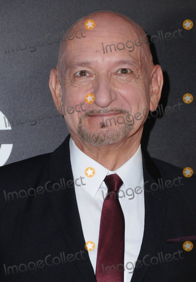 Ben Kingsley Photo - 06 November 2016 - Beverly Hills California Ben Kingsley 20th Annual Hollywood Film Awards held at Beverly Hilton Hotel Photo Credit Birdie ThompsonAdMedia