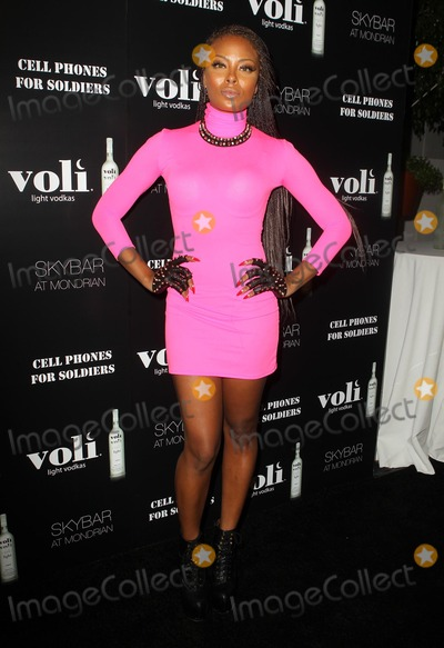 Eva Pigford Photo - 6 December 2012 - West Hollywood California - Eva Pigford Voli Lights Vodka Benefit With Fergie Held at SkyBar at the Mondrian Photo Credit Kevan BrooksAdMedia