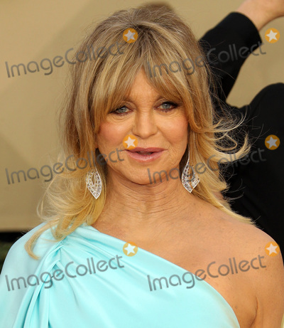 Goldie Hawn Photo - 21 January 2018 - Los Angeles California - Goldie Hawn 24th Annual Screen Actors Guild Awards Arrivals held at the Shrine Auditorium in Los Angeles Photo Credit AdMedia