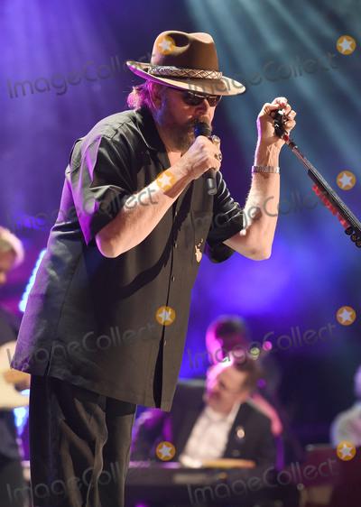 Hank Williams Jr Photo - 10 June 2016 - Nashville Tennessee - Hank Williams Jr 2016 CMA Music Festival Nightly Concert held at Nissan Stadium Photo Credit Laura FarrAdMedia