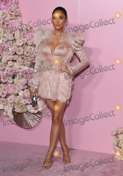 Shay Mitchell Photo - 04 April 2019 - Hollywood California - Shay Mitchell Patrick Ta Beauty Collection Launch held at Goya Studios Photo Credit Birdie ThompsonAdMedia